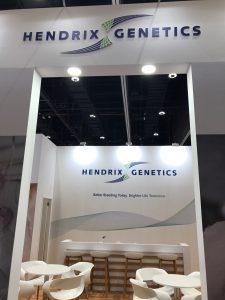 Bespoke exhibition stand for Hendrix at VIV MEA 2018 ADNEC Abu Dhabi UAE