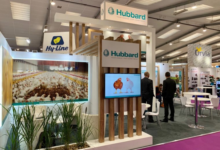 Creative stand design at Parc Expo in Rennes France for Hubbard