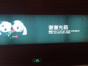 panda-image-2
