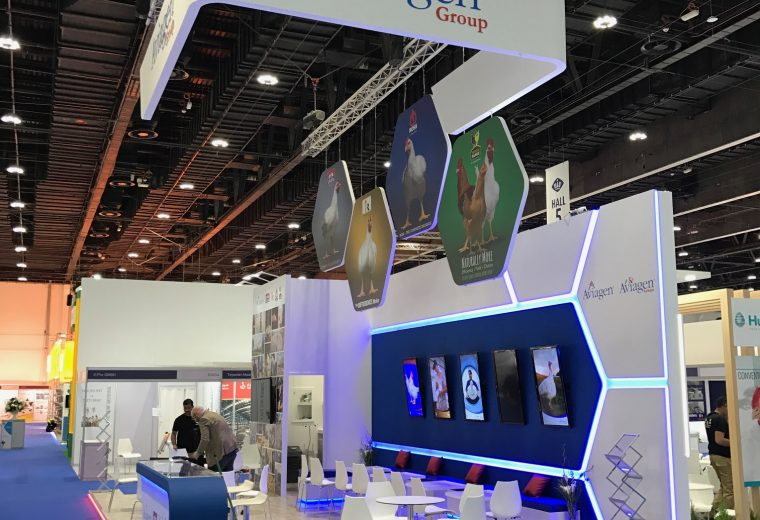 Exhibition stand design and build at VIV MEA 2018 ADNEC Abu Dhabi UAE